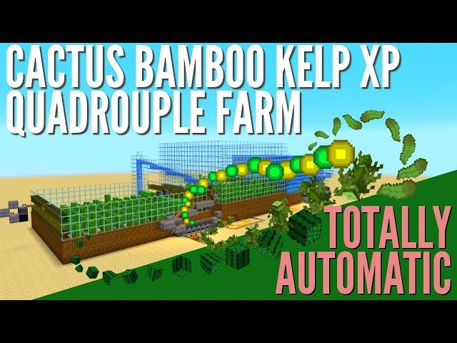 Xp Farm How To Make An Infinite Automatic Kelp And Cactus Farm In Minecraft 1 14 With Avomance دیدئو Dideo